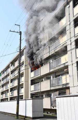 団地火災、TV電源コード原因か