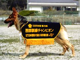 県内唯一の警察犬訓練所。家庭犬のしつけや訓練も実施