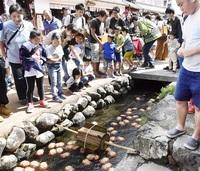 秋晴れ熊川宿多彩催し ブリキ金魚レース、伝統芸能 観光客が満喫 いっぷく時代村 地域の絆深め20年 若狭町