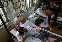 フィリピンでデング熱猛威