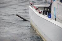 冬の日本海、ボートのプロペラに硬い塩ビパイプが絡まり動けず 強風と荒波の中、6時間の救助劇【敦賀海保日誌】