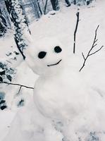 「山で見かけた不気味な雪だるま...」