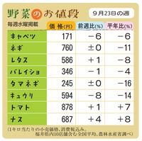 野菜のお値段 9月23日の週