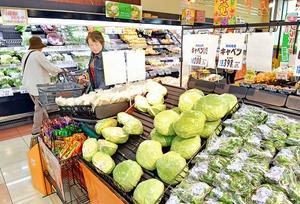 全国的な天候不順の影響で高値になっている野菜売り場=25日、福井市内のスーパー