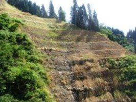 福井県勝山市北谷町の恐竜化石発掘現場。 次々と世界クラスの化石が発見されている。