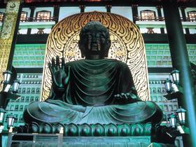 高さ17メートルの大仏本尊は日本最大