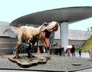 巨大ティラノ像 お預け 勝山・県立恐竜博 増改築…