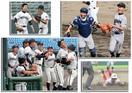 特別な夏、写真700枚 県高校野球大会 試合ご…