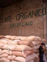 輸出前の生豆保管庫(メキシコ)