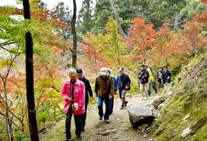 「花筐語り部の会」の案内で花筐公園を散策する観光客=11月11日、福井県越前市粟田部町