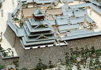 秀吉の大坂城天守台を確認