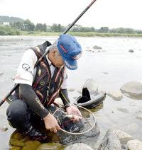 15日解禁前に試し釣り、九頭竜中部漁協 大物も成育「上々」