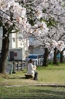 がんになり、夫と別れた明美さん(仮名)。「愛犬と散歩するのが楽しみ」と話す=4月、福井県福井市