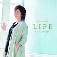 <隠れた名盤> 沢田知可子『LIFE〜シアワセの種〜』 終活をテーマに「終わる」までの喜びを歌う