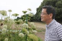 「ひと・まち・東海」消えゆく伝統野菜後世に